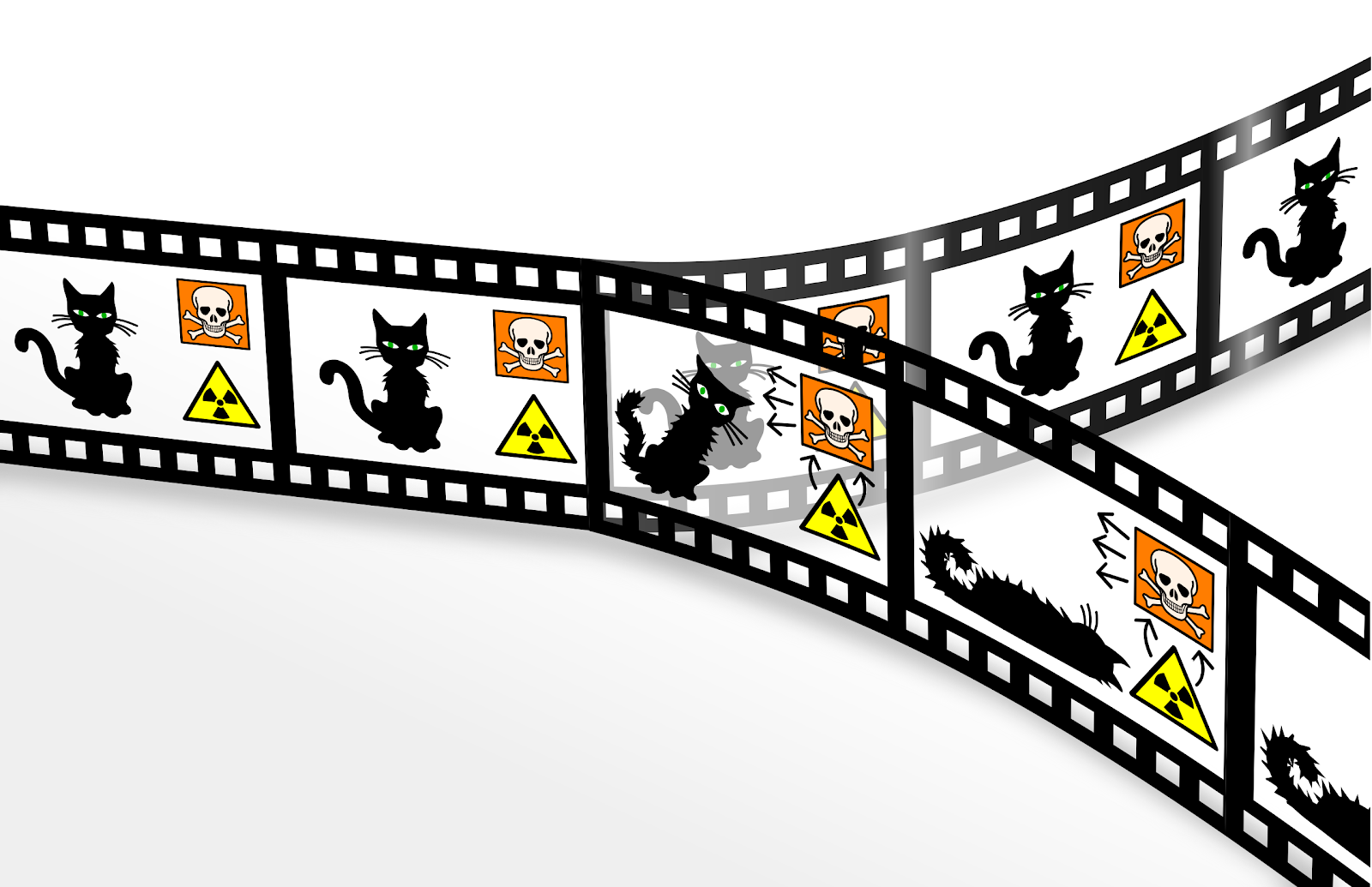 Schrödinger's experiment: entangled cat