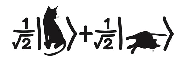 Schrödinger's cat experiment: probability of result